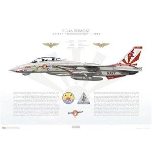 F-14A Tomcat VF-111 Sundowners, NL200 / 161621. CVW-15, USS Carl Vinson CVN-70 - 1989 Squadron Lithograph