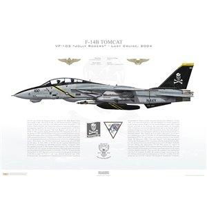 F-14B Tomcat VF-103 Jolly Rogers, AA100 / 162918. CVW-17, USS John F. Kennedy CV-67 - Last Cruise, 2004 Squadron Lithograph