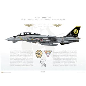 F-14D Tomcat VF-31 Tomcatters, AJ100 / 164342. CVW-8, USS Theodore Roosevelt CVN-71 - Retirement Scheme, 2006 Squadron Lithograph