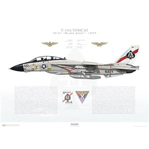 F-14A Tomcat VF-41 Black Aces, AJ100 / 160379. CVW-8, USS Nimitz CVN-68 - 1977 Squadron Lithograph