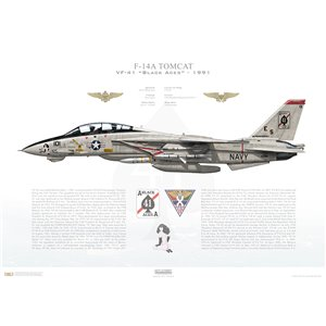 F-14A Tomcat VF-41 Black Aces, AJ101 / 162689. CVW-8, USS Theodore Roosevelt CVN-71 - 1991 Squadron Lithograph