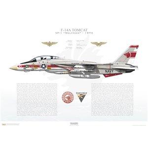 F-14A Tomcat VF-1 Wolfpack, NK101 / 158627. CVW-14, USS Enterprise CVAN-65 - 1974 Squadron Lithograph