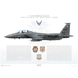F-15E Strike Eagle 366th Fighter Wing, 391st Fighter Squadron, MO/90-0249 - Mountain Home AFB, ID - 2008 Squadron Lithograph