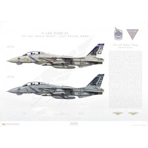 "F-14B Tomcat VF-143 Pukin' Dogs, AG100 / 163220 and AG143 / 162926. CVW-7, USS George Washington CVN-73 - Last Cruise, 2005   Size: Standard - 24 x 16"" / 594 x 420mm Squadron Lithograph"