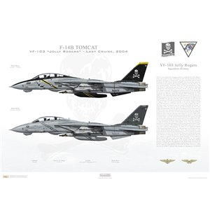 "F-14B Tomcat VF-103 Jolly Rogers, AA100 / 162918 and AA101 / 162705. CVW-17, USS John F. Kennedy CV-67 - Last Cruise 2004   Size: Standard - 24 x 16"" / 594 x 420mm Squadron Lithograph"