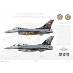 "F-16C/D Fighting Falcon 93-0696/93-0678, 192nd Fighter Squadron / 192 Filo ""Tigers"" - Tiger Meet 2006 - Profile Print"