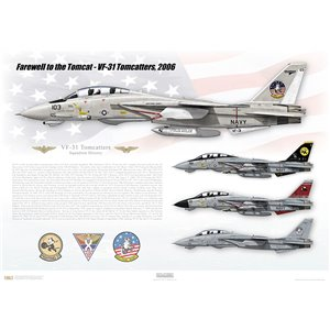 "Farewell to the Tomcat, VF-31 Tomcatters, 2006    Size: Standard - 24 x 16"" / 594 x 420mm Squadron Lithograph"