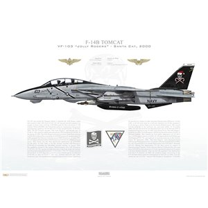F-14B Tomcat VF-103 Jolly Rogers, AA103 / 161435, Santa Cat. CVW-17, USS George Washington CVN-73, 2000 Squadron Lithograph