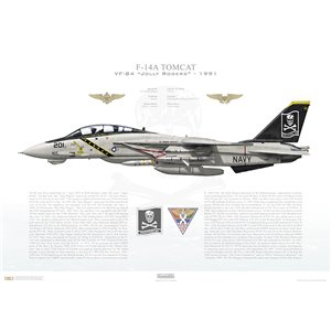 F-14A Tomcat VF-84 Jolly Rogers, AJ201 / 162692. CVW-8, USS Theodore Roosevelt CVN-71 - Flag Tail, 1991 Squadron Lithograph