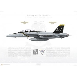 F/A-18F Super Hornet VFA-103 Jolly Rogers, AA103 / 166620. CVW-17 - 2005 Squadron Lithograph
