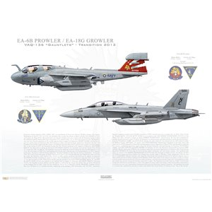 "VAQ-136 Gauntlets Transition, 2013 / EA-6B Prowler - EA-18G Growler   Size: Standard - 24 x 16"" / 594 x 420mm Squadron Lithograph"
