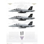 VFA-103 Jolly Rogers Homecoming 2013 - Profile Print