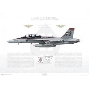 F/A-18F Super Hornet VFA-41 Black Aces, NH100 / 166842. CVW-11, USS Nimitz CVN-68, 2009 Squadron Lithograph