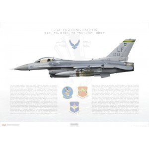 "F-16C Fighting Falcon 19th Air Force, 56th Fighter Wing, 310th Fighter Squadron ""Tophats"", LF/90-722 - Luke AFB, AZ - 2007 Squadron Lithograph"
