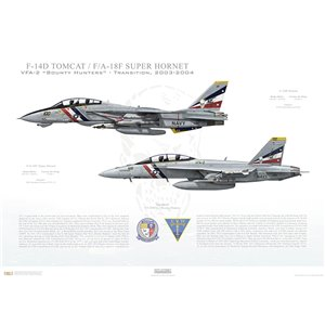 "VF-2 to VFA-2 Bounty Hunters Transition, 2003-2004 / F-14D Tomcat - F/A-18F Super Hornet   Size: Standard - 24 x 16"" / 594 x 420mm Squadron Lithograph"