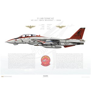 F-14B Tomcat VF-101 Grim Reapers, AD101 / 162923. 1995 Squadron Lithograph