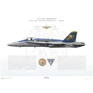 F/A-18C Hornet VFA-192 Golden Dragons,NF300 / 164010. CVW-5, USS Kitty Hawk CV-63 - 2007 Squadron Lithograph