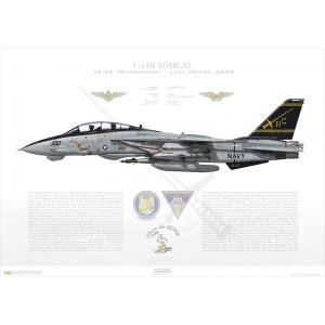 F-14B Tomcat VF-32 Swordsmen, AC100 / 162916. CVW-3, USS Harry S Truman CVN-75, Last Cruise, 2005 Squadron Lithograph