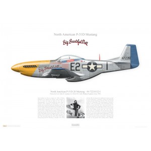 "P-51D-20 Mustang, 44-72218 / E2-I ""Big Beautiful Doll"" - 361st FG, 375th FS - Little Walden, England, June 1945. Flown by Col. John D. Landers   Squadron Lithograph"