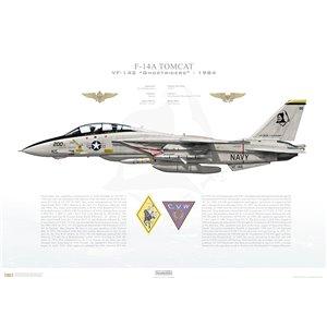 F-14A Tomcat VF-142 Ghostriders, AG200 / 161422. CVW-7, USS Dwight D Eisenhower CVN-69 - 1984 Squadron Lithograph