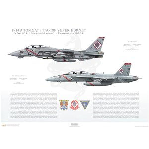 "VF-102 to VFA-102 Diamondbacks Transition, 2002 / F-14B Tomcat - F/A-18F Super Hornet   Size: Standard - 24 x 16"" / 594 x 420mm Squadron Lithograph"