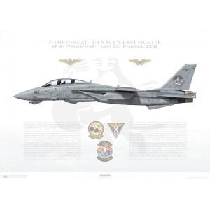 F-14D Tomcat VF-31 Tomcatters, AJ102 / 163904. LAST CAT STANDING, 2006 Squadron Lithograph