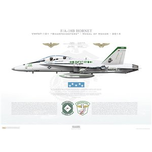F/A-18B HornetVMFAT-101Sharpshooters, SH215 / 163115 - Medal of Honor.MAG-11, MAW-3, MCAS Miramar, CA- 2014 Squadron Lithograph