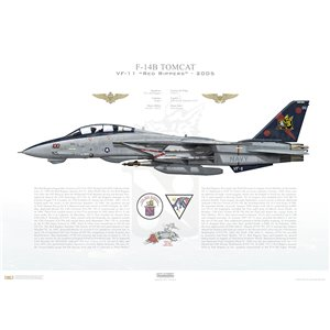 F-14B Tomcat VF-11 Red Rippers, AA100 / 163227. CVW-17, USS John F. Kennedy CV-67 - 2005 Squadron Lithograph