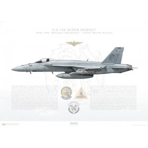 F/A-18E Super Hornet VFA-192 Golden Dragons, NG401 / 165783. CVW-9, First Rhino Flight - 2014 Squadron Lithograph