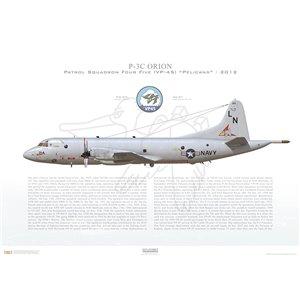 P-3C Orion Patrol SquadronFour Five (VP-45) Pelicans,LN214 / 158214.NAS Jacksonville,FL-2012 Squadron Lithograph