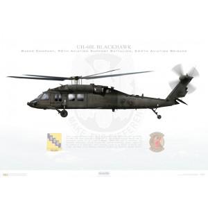 UH-60L Blackhawk, Baker Company, 244th Aviation Brigade, 90th Aviation Support Battalion, NAS Fort Worth JRB, TX Squadron Lithograph
