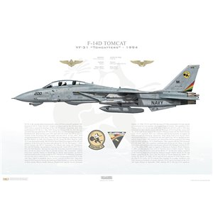 F-14D Tomcat VF-31 Tomcatters, NK200 / 164340. CVW-14, USS Carl Vinson CVN-70, 1994 Squadron Lithograph