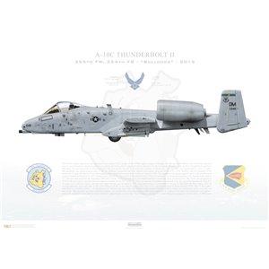 A-10C Thunderbolt II 355th FW, 354th FS Bulldogs, FS/82-684.Davis-Monthan AFB, AZ- 2015 Squadron Lithograph