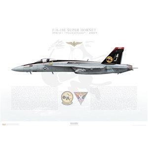 F/A-18E Super Hornet VFA-31 Tomcatters, AJ100 / 166776. CVW-8, 2007 Squadron Lithograph