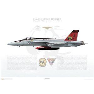 F/A-18E Super Hornet VFA-31 Tomcatters, AJ100 / 166776. CVW-8, USS George H. W. Bush CVN-77, 2014 Squadron Lithograph