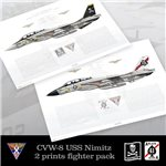 CVW-8 Fighter Pack - 1977 - F-14A Tomcat VF-84 & VF-41