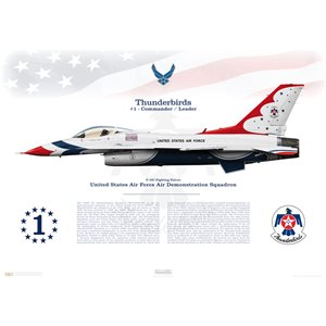"F-16C Fighting Falcon United States Air Force Air Demonstration Squadron ""Thunderbirds"" - 57th Wing, Nellis AFB, NV - Squadron Lithograph"