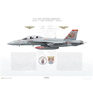 F/A-18F Super Hornet VFA-11 Red Rippers, AB101 / 166634. CVW-1, USS Theodore Roosevelt, CVN-71, 2015 Squadron Lithograph
