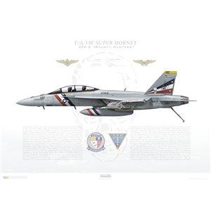 F/A-18F Super Hornet VFA-2 Bounty Hunters, NE100 / 166804. CVW-2, USS Carl Vinson CVN-70, 2016 - Squadron Lithograph