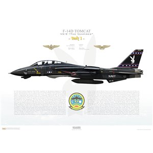 "F-14D Tomcat VX-9 The Vampires, XE1 / 164604 ""Vandy 1"", NAS Point Mugu (Det)  Squadron Lithograph"
