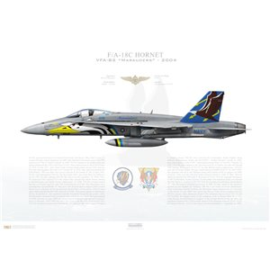 "F/A-18C Hornet VFA-82 Marauders, AB300 / 165200 ""AFLAC"". CVW-1, USS Enterprise CVN-65 - 2004 Squadron Lithograph"
