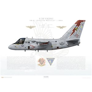 S-3B Viking VS-21 Fighting Redtails, NF700 / 160156. CVW-5, USS Independence CV-62 - 1994 Squadron Lithograph