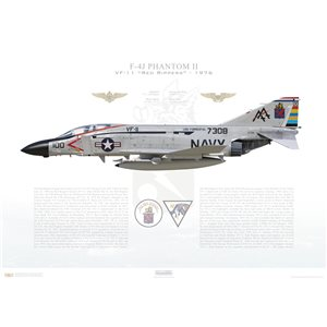 F-4J Phantom II VF-11 Red Rippers, AA100 / 157308. CVW-17, USS Forrestal CV-59, 1976 Squadron Lithograph