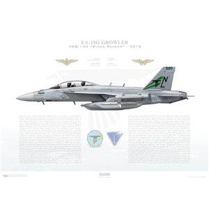 EA-18G Growler VAQ-132 Black Ravens, NL520 / 166940. COMVAQWINGPAC, NAS Whibdey Island, WA - 2016 Squadron Lithograph