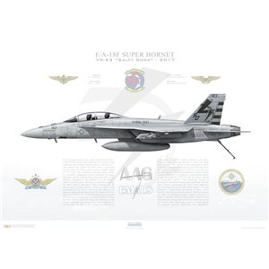 F/A-18F Super Hornet VX-23 Salty Dogs, SD123 / 166969. Naval Test Wing Atlantic, NAS Patuxent River, MD, 2017 - Squadron Lithograph