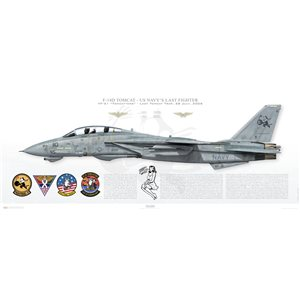 """F-14D Tomcat VF-31 Tomcatters,AJ110 / 164346 """"Sweet Little Miss"""" - The Last Tomcat Trap  Print Size: 40x16"""" / 1000x400mm By purchasing this print you support the efforts of The Museum of Flightin saving """"Sweet Little Miss"""" from an uncertain future (most likely scrapping) so she can be relocated, displayed and taken care of for future generations to see! Each prints are individually numbered and contain the donor's (your) name! Squadron Lithograph"""