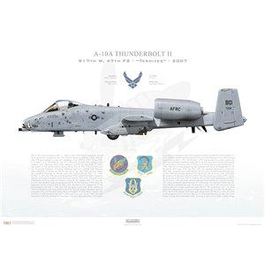 A-10A Thunderbolt II 917th FW, 47th FS Termites, BD/79-134, Barksdale AFB, LA - 2007 Squadron Lithograph
