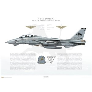 F-14D Tomcat VF-213 Black Lions, NH101 / 164603. CVW-11, USS Carl Vinson CVN-70 - Operation Enduring Freedom, 2001 Squadron Lithograph