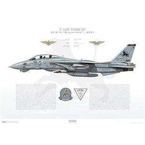 F-14D Tomcat VF-213 Black Lions, NH101 / 164603. CVW-11, USS Carl Vinson CVN-70 - Operation Enduring Freedom, 2001 Squadron Lithograph