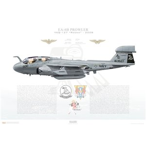 EA-6B Prowler VAQ-137 Rooks, AB500 / 163527. CVW-1, USS Enterprise CVN-65 - 2008 Squadron Lithograph